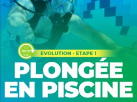 plongeeHandi